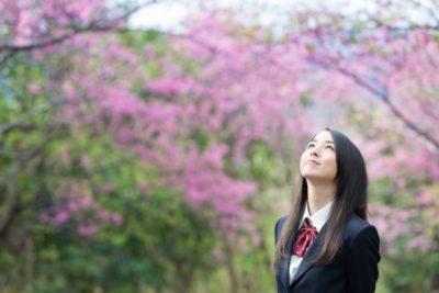 女の子、桜