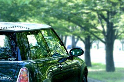 ドライブ、森